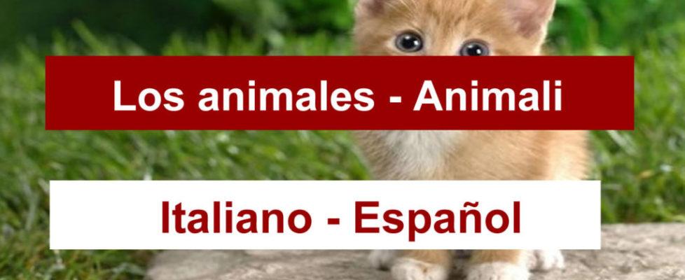animales-en-italiano